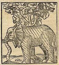 elephant and bodhi tree